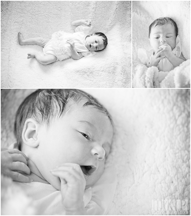 newborn photography, nh (5)